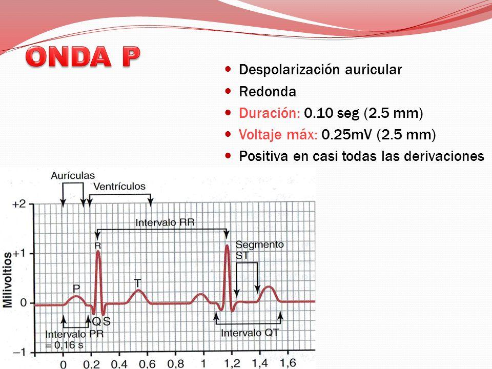 ONDA P Despolarización auricular Redonda Duración: 0.10 seg (2.5 mm)