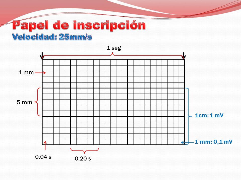 Papel de inscripción Velocidad: 25mm/s