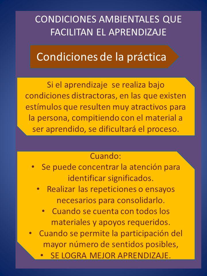 Condiciones de la práctica