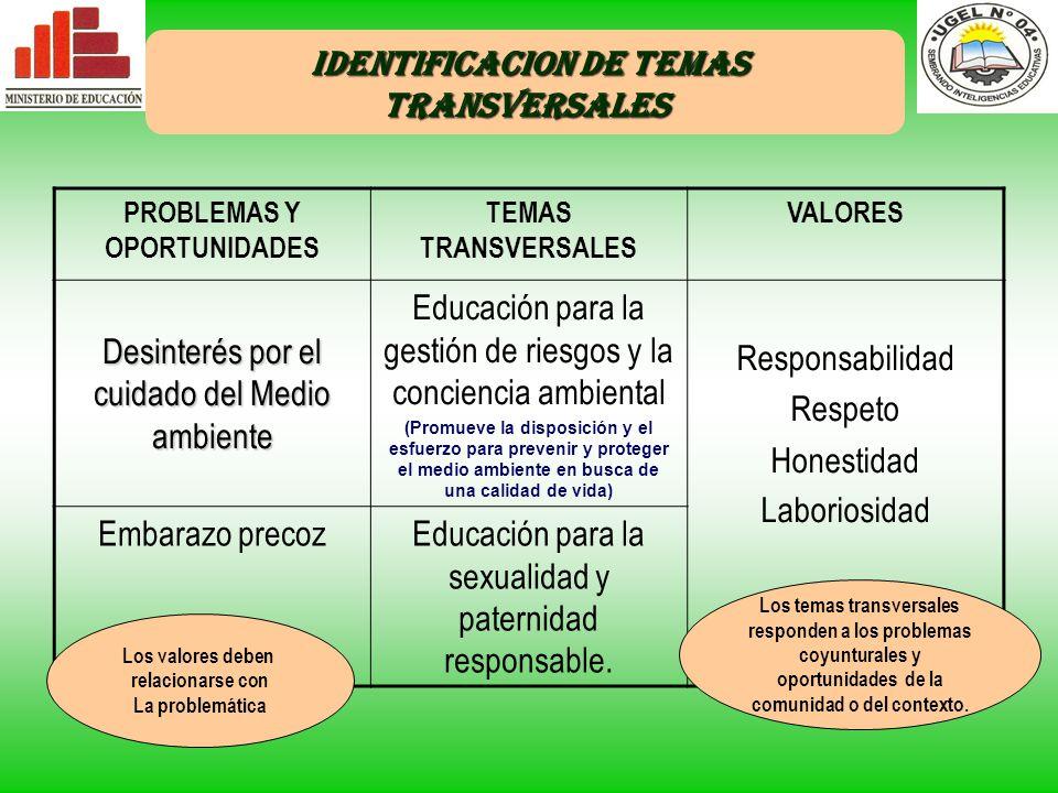IDENTIFICACION DE TEMAS TRANSVERSALES PROBLEMAS Y OPORTUNIDADES