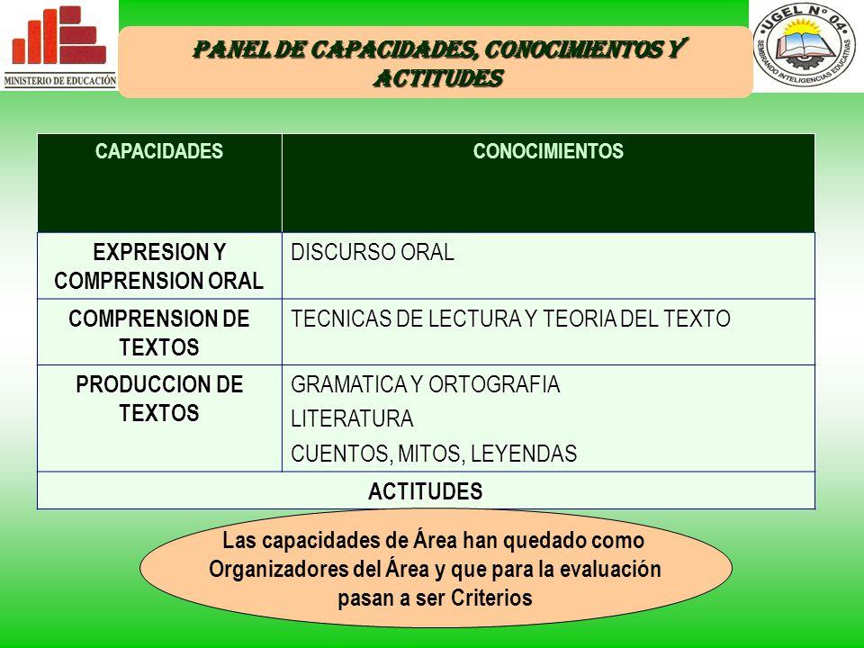 PANEL DE CAPACIDADES, CONOCIMIENTOS Y ACTITUDES