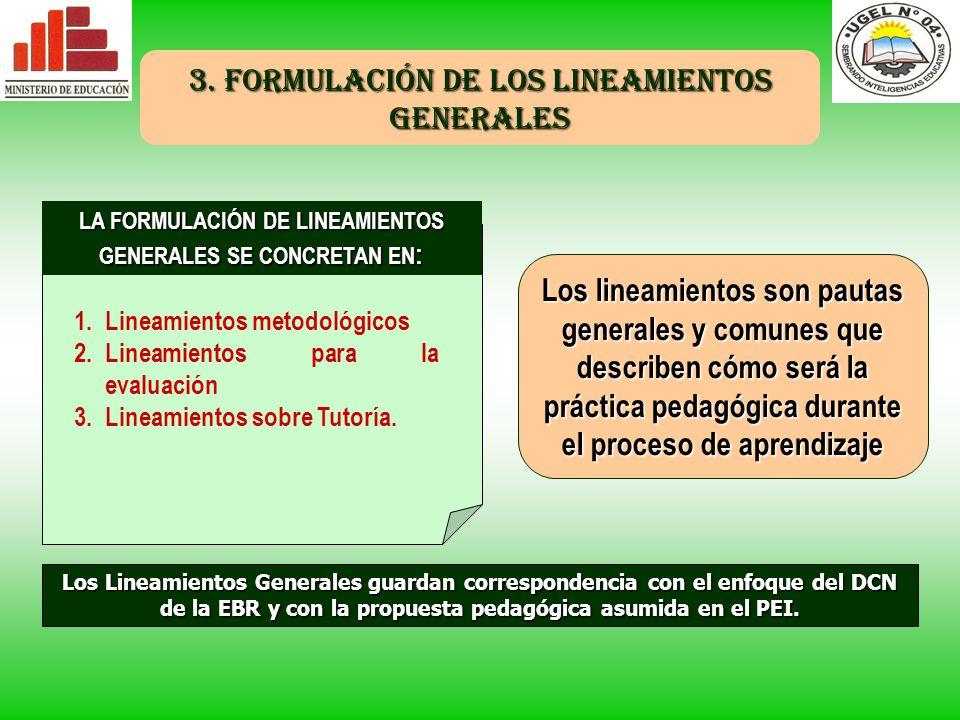LA FORMULACIÓN DE LINEAMIENTOS GENERALES SE CONCRETAN EN: