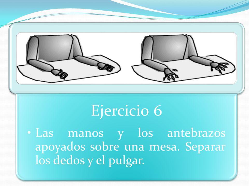 Ejercicio 6 Las manos y los antebrazos apoyados sobre una mesa. Separar los dedos y el pulgar.