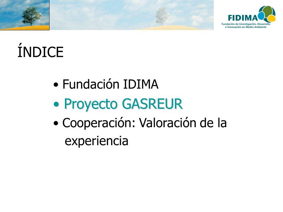 ÍNDICE Proyecto GASREUR Fundación IDIMA Cooperación: Valoración de la