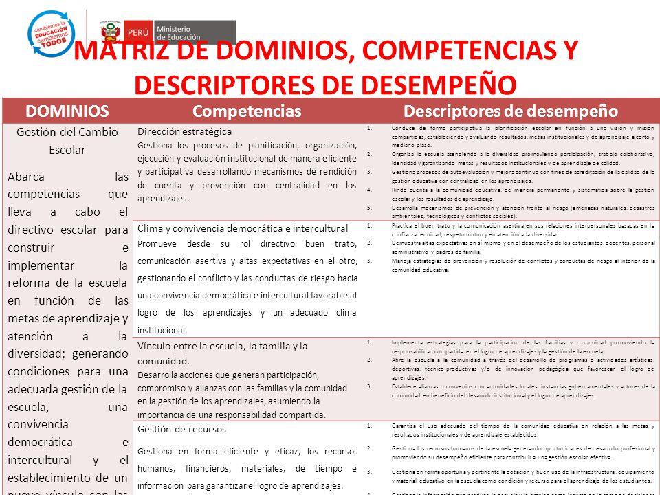MATRIZ DE DOMINIOS, COMPETENCIAS Y DESCRIPTORES DE DESEMPEÑO