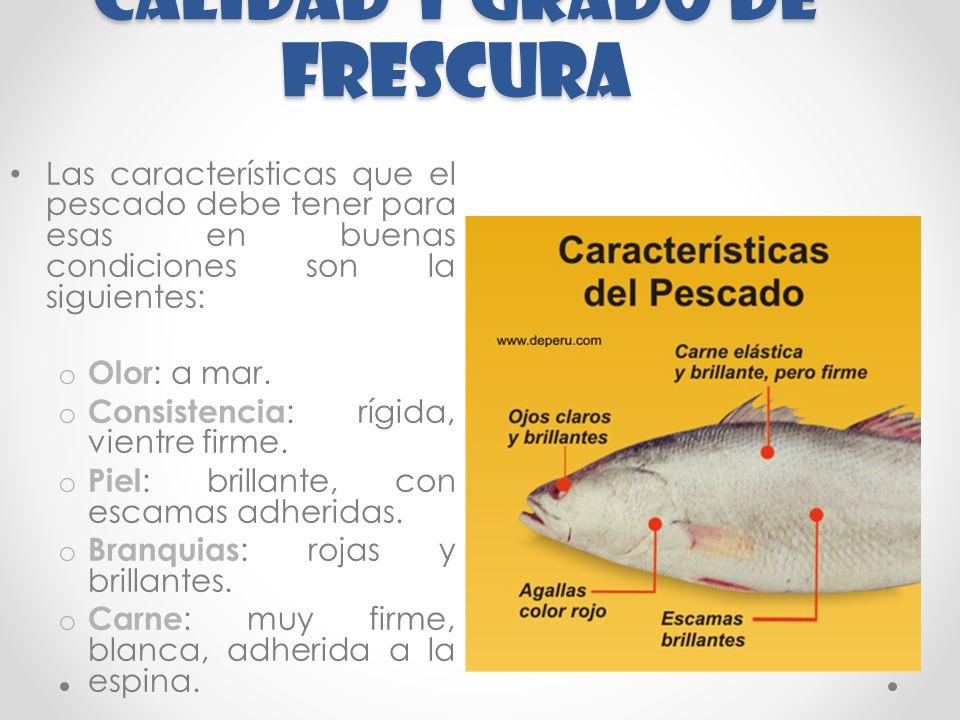 CALIDAD Y GRADO DE FRESCURA