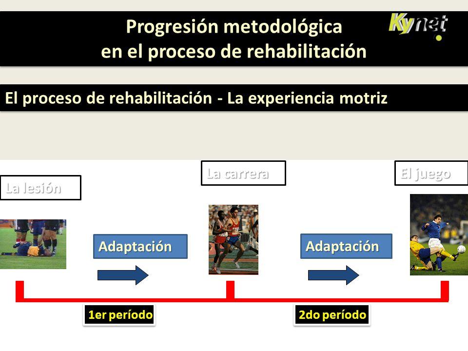 Progresión metodológica en el proceso de rehabilitación