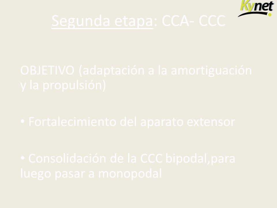 Segunda etapa: CCA- CCC