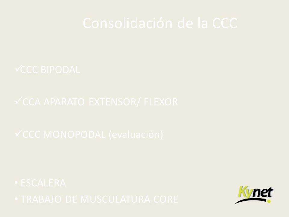 Consolidación de la CCC