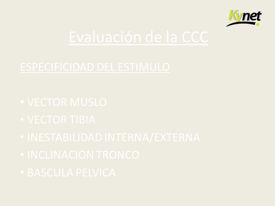 Evaluación de la CCC ESPECIFICIDAD DEL ESTIMULO VECTOR MUSLO