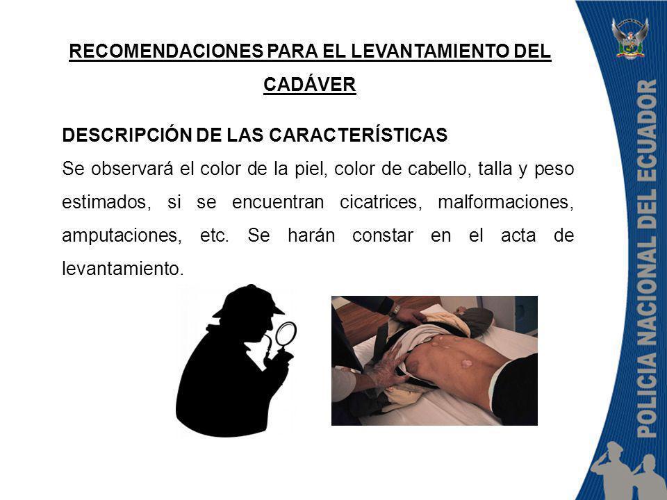RECOMENDACIONES PARA EL LEVANTAMIENTO DEL CADÁVER