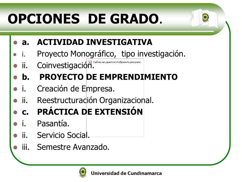 OPCIONES DE GRADO. a. ACTIVIDAD INVESTIGATIVA ii. Coinvestigación.