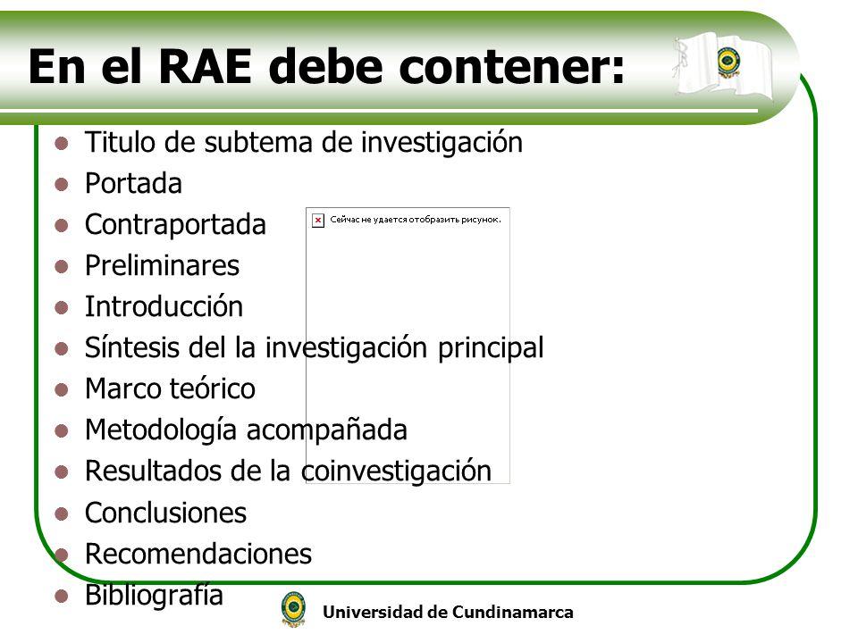 En el RAE debe contener:
