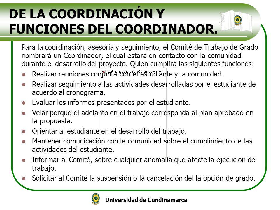 DE LA COORDINACIÓN Y FUNCIONES DEL COORDINADOR.