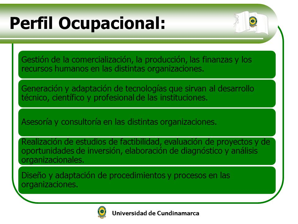 Perfil Ocupacional: Gestión de la comercialización, la producción, las finanzas y los recursos humanos en las distintas organizaciones.