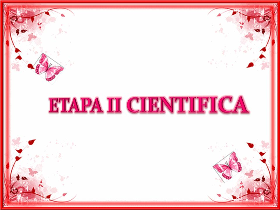 ETAPA II CIENTIFICA