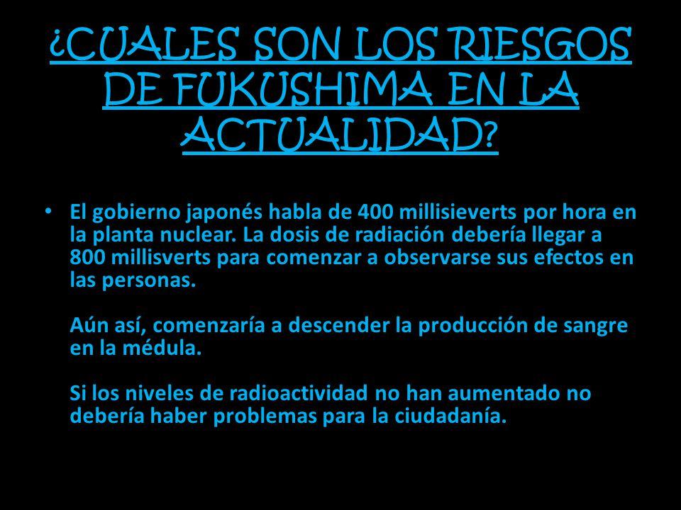 ¿CUALES SON LOS RIESGOS DE FUKUSHIMA EN LA ACTUALIDAD