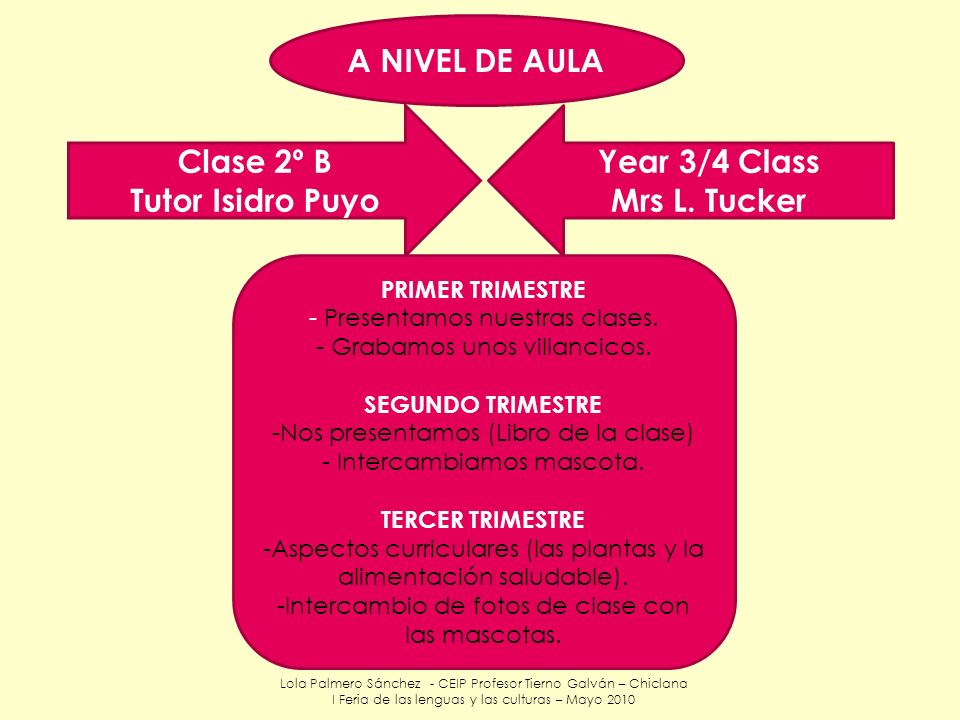A NIVEL DE AULA Clase 2º B Tutor Isidro Puyo Year 3/4 Class