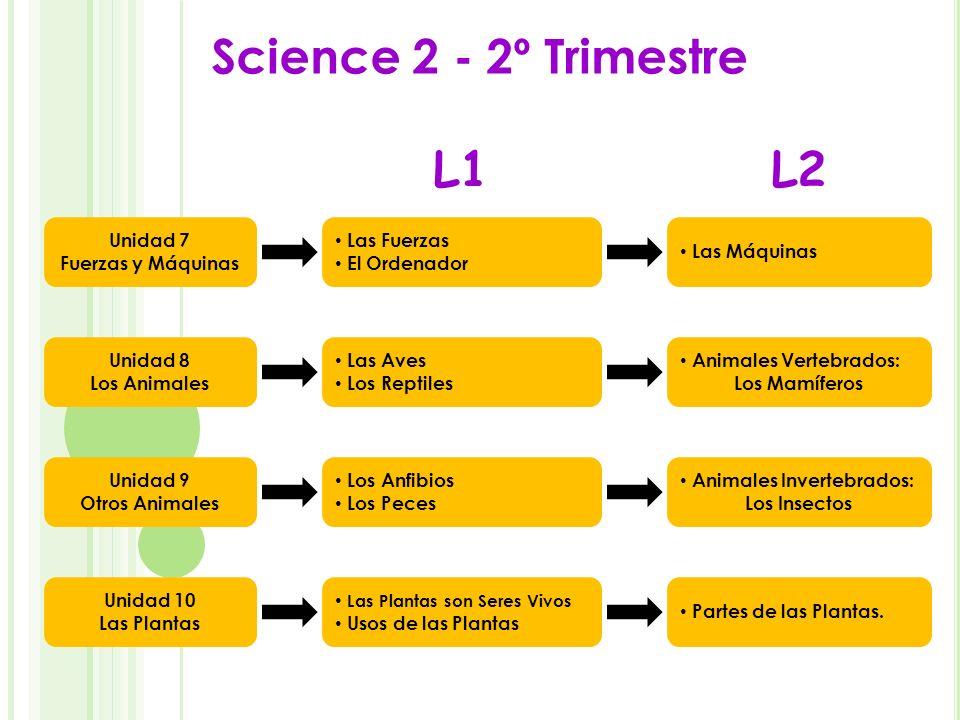 Science 2 - 2º Trimestre L1 L2 Unidad 7 Fuerzas y Máquinas Las Fuerzas