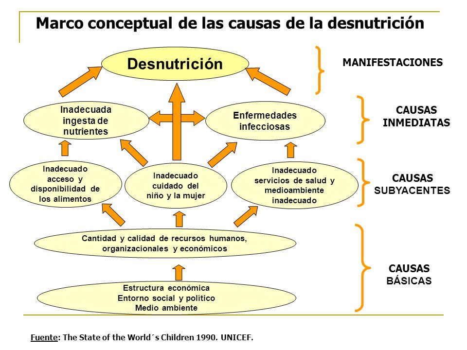 Marco conceptual de las causas de la desnutrición