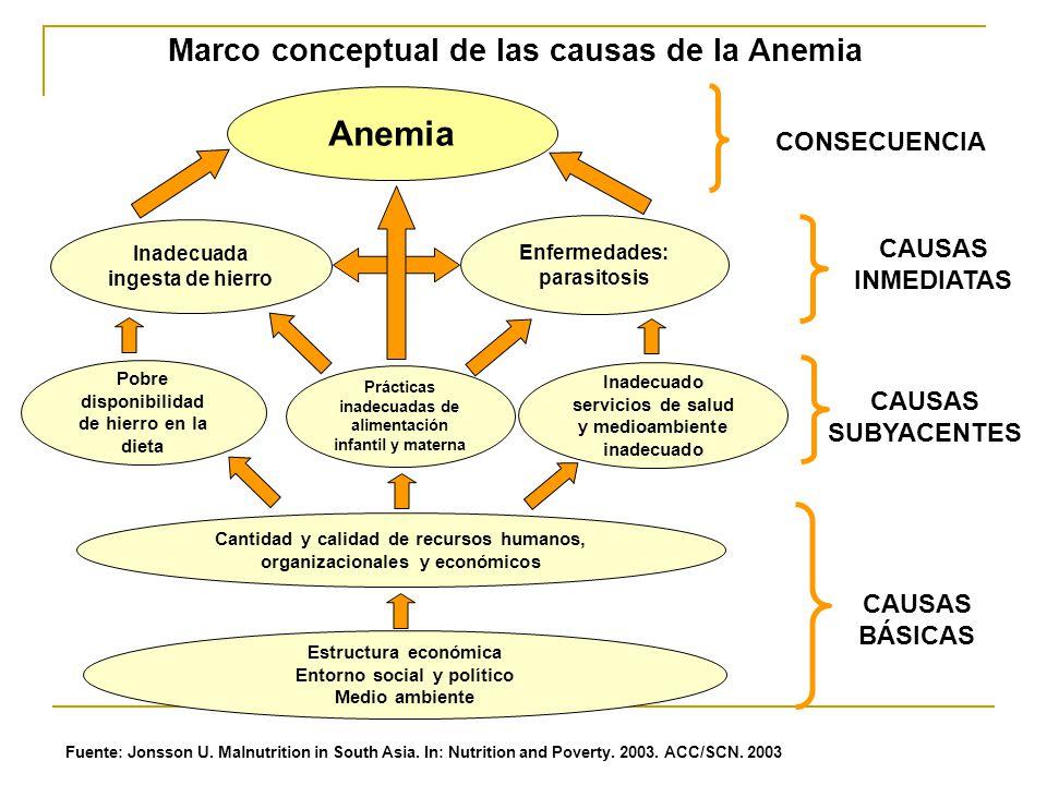 Anemia Marco conceptual de las causas de la Anemia CONSECUENCIA