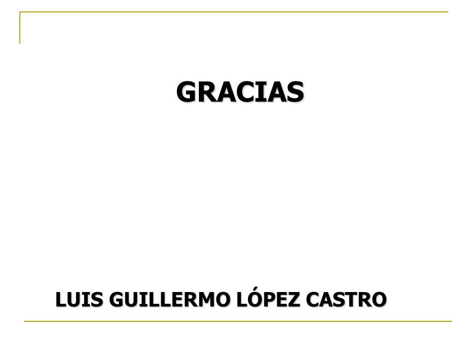 LUIS GUILLERMO LÓPEZ CASTRO