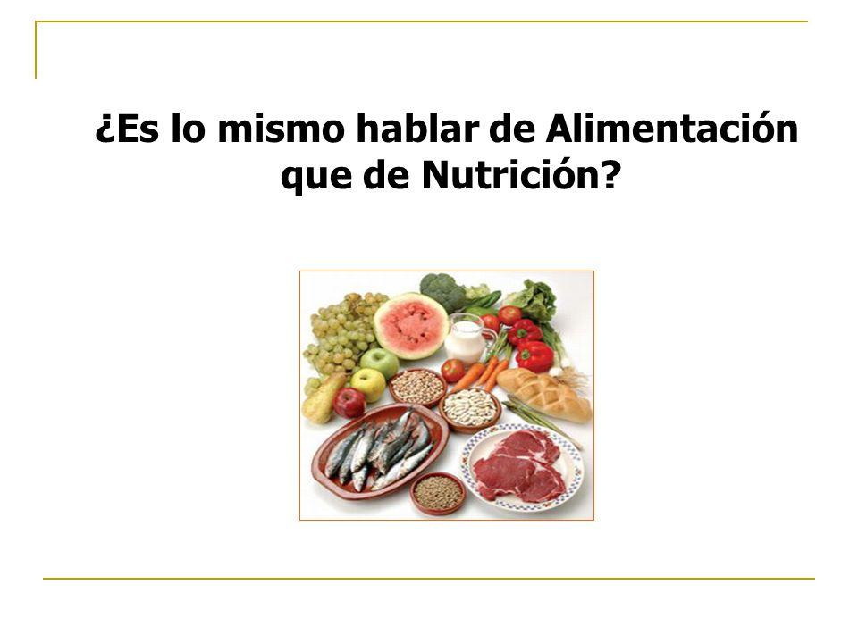 ¿Es lo mismo hablar de Alimentación que de Nutrición