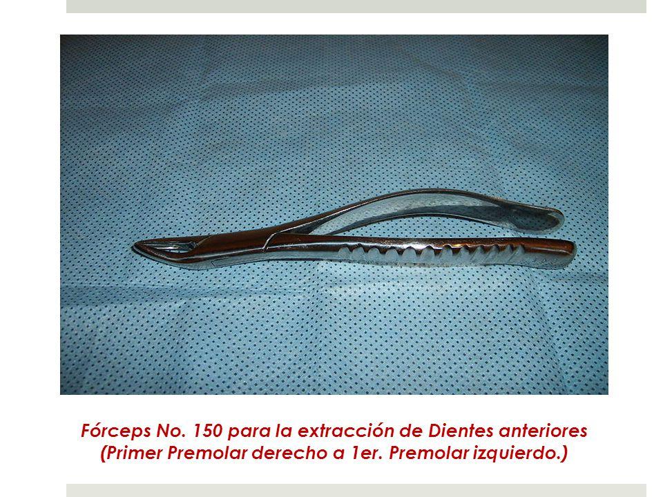 Fórceps No. 150 para la extracción de Dientes anteriores (Primer Premolar derecho a 1er.