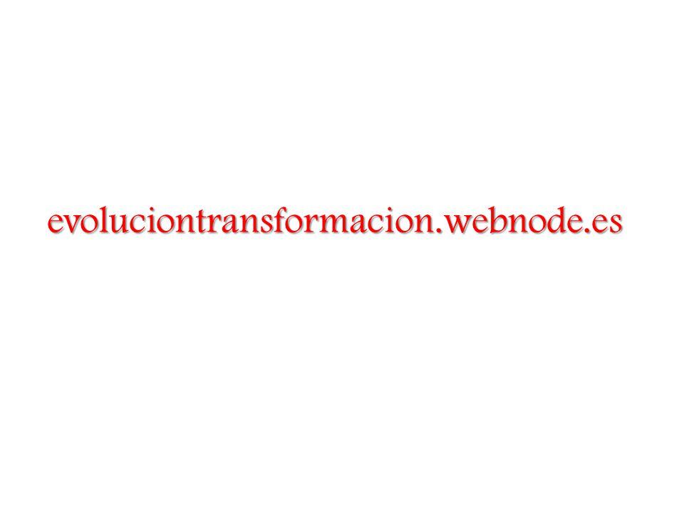 evoluciontransformacion.webnode.es