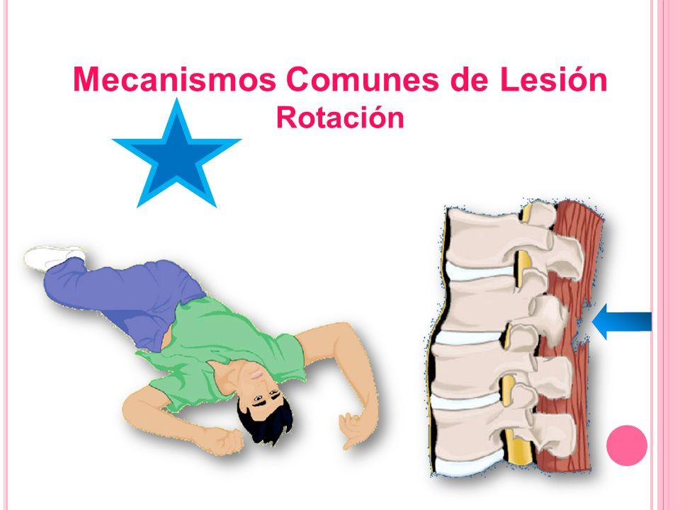Mecanismos Comunes de Lesión