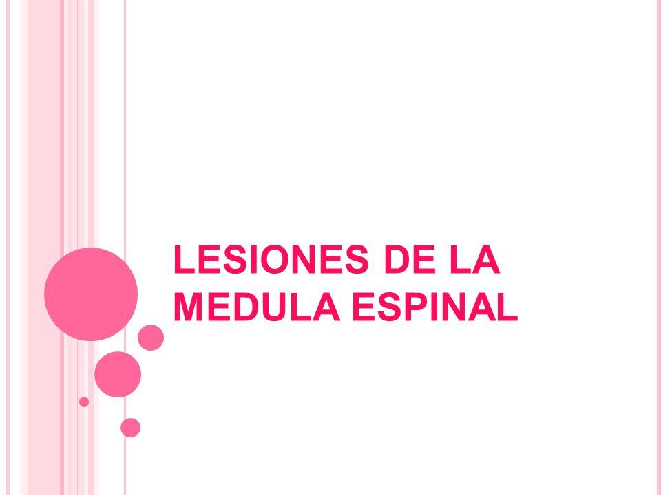 LESIONES DE LA MEDULA ESPINAL