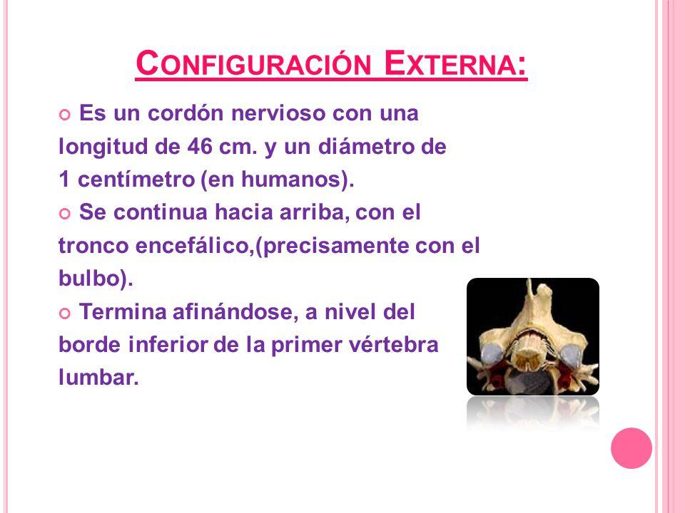 Configuración Externa: