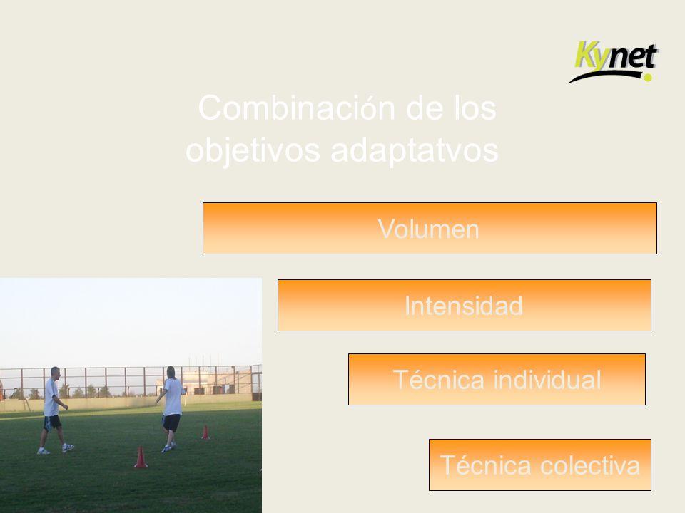Combinación de los objetivos adaptatvos