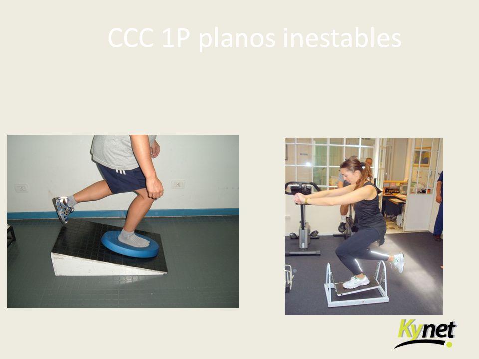 CCC 1P planos inestables