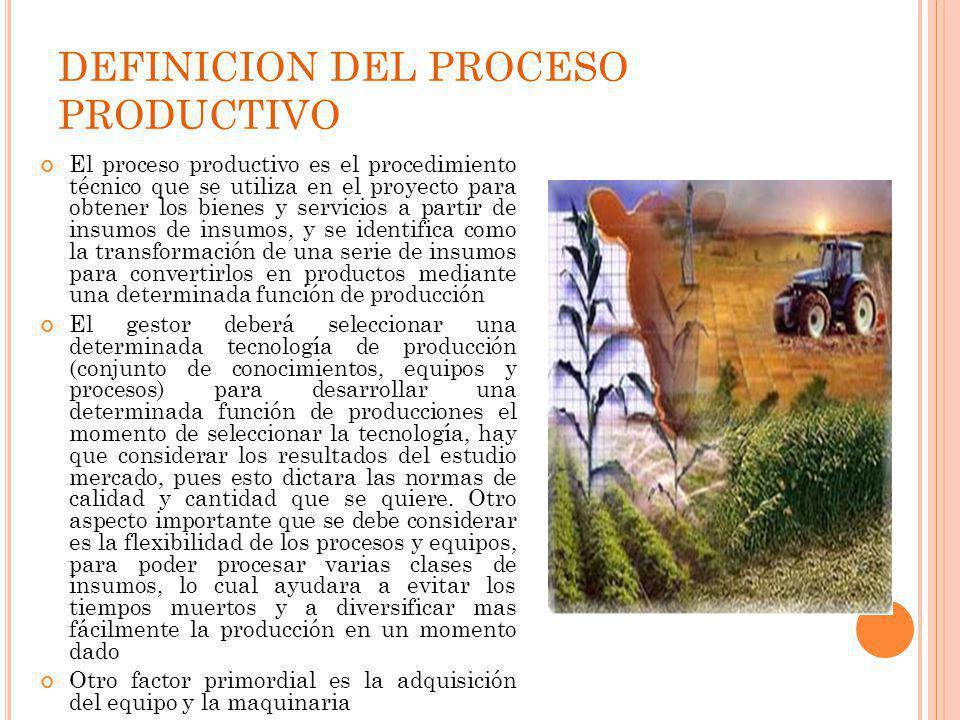DEFINICION DEL PROCESO PRODUCTIVO
