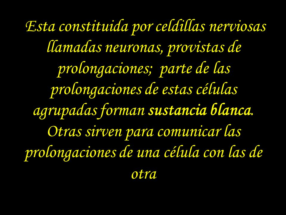 Esta constituida por celdillas nerviosas llamadas neuronas, provistas de prolongaciones; parte de las prolongaciones de estas células agrupadas forman sustancia blanca.