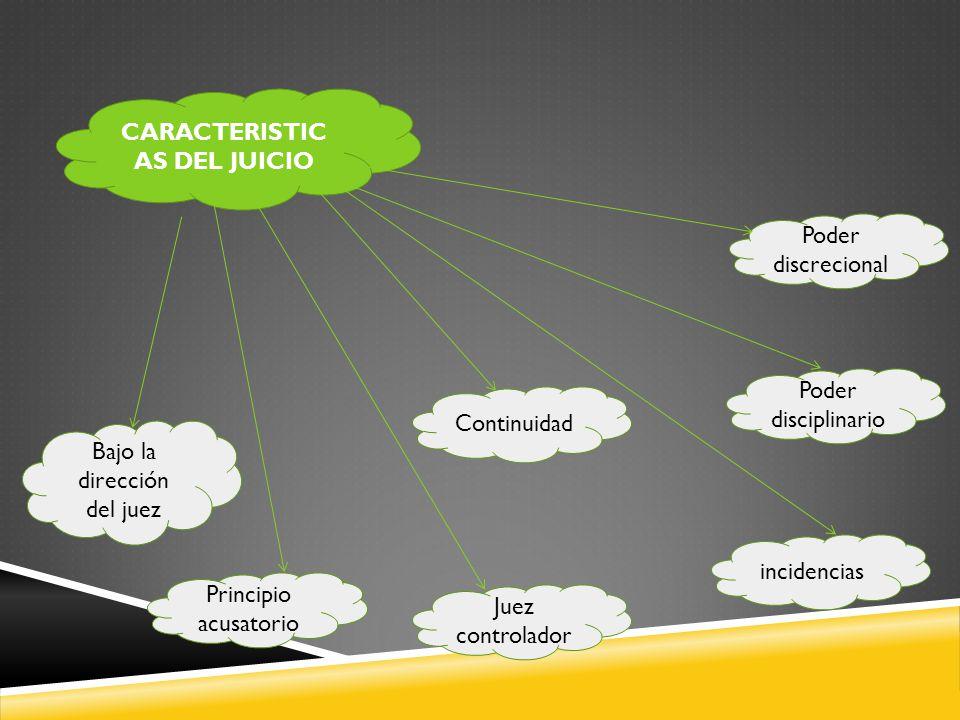 CARACTERISTICAS DEL JUICIO