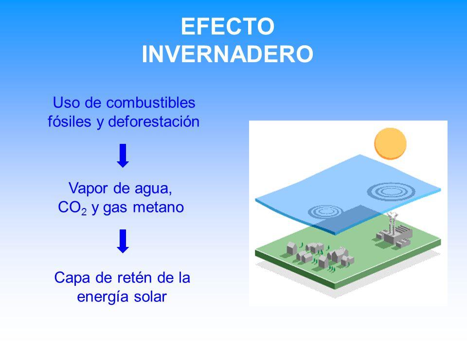 EFECTO INVERNADERO Uso de combustibles fósiles y deforestación