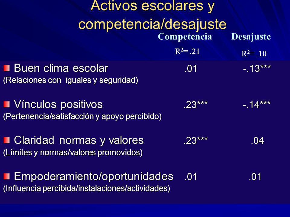 Activos escolares y competencia/desajuste
