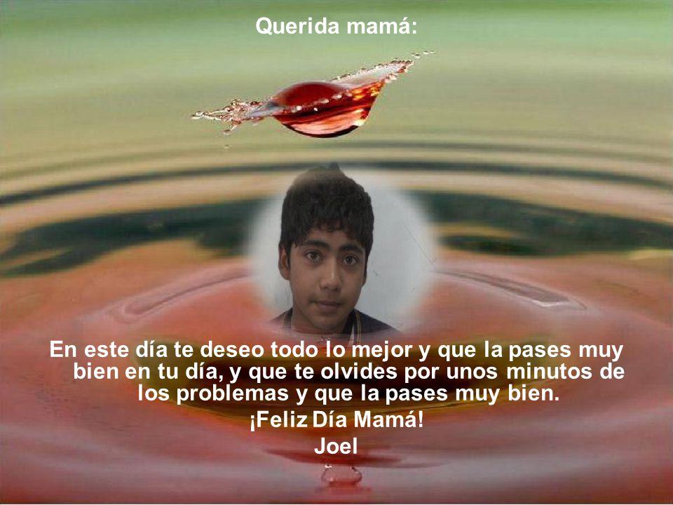 Querida mamá: