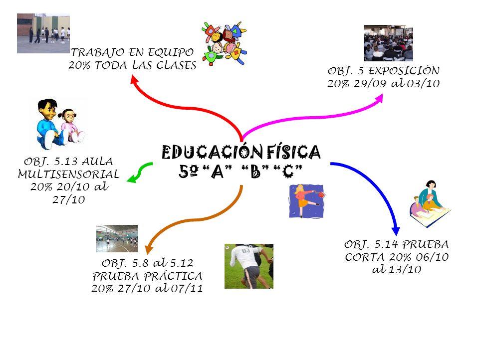 EDUCACIÓN FÍSICA 5º A B C