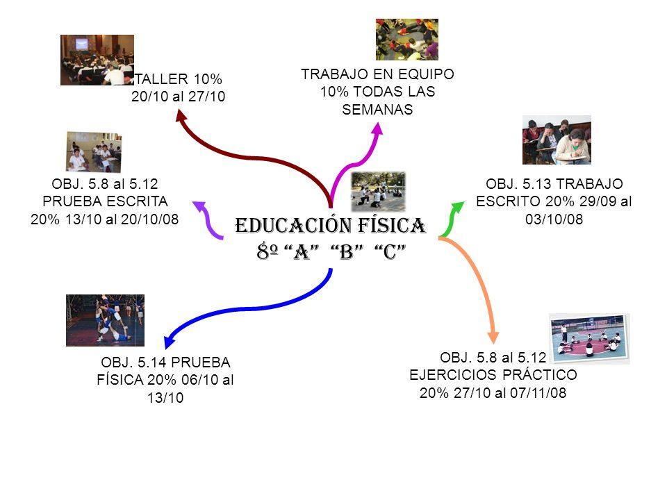 EDUCACIÓN FÍSICA 8º A B C