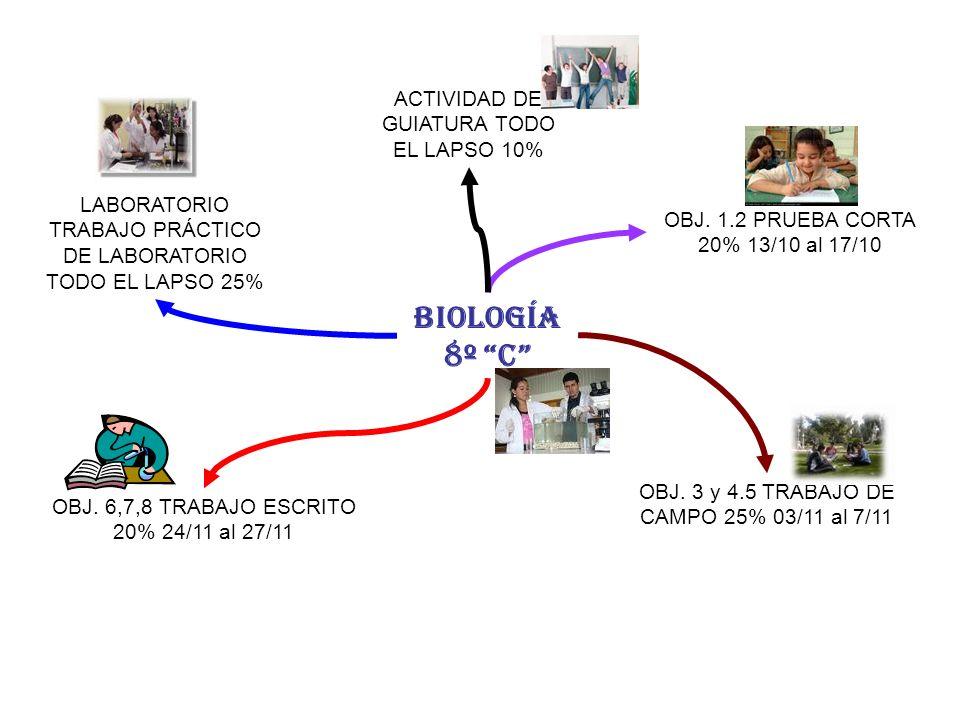 BIOLOGÍA 8º C ACTIVIDAD DE GUIATURA TODO EL LAPSO 10%