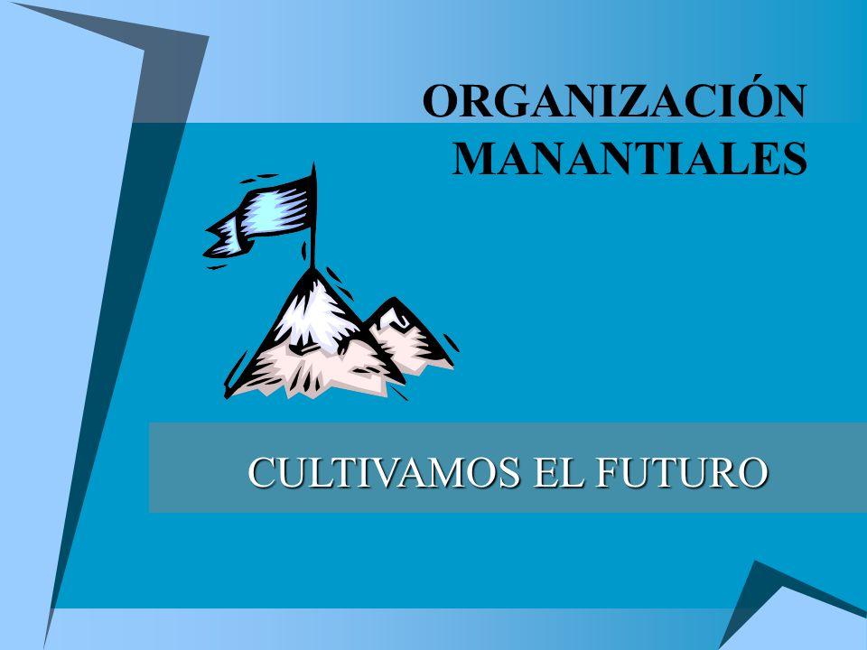ORGANIZACIÓN MANANTIALES