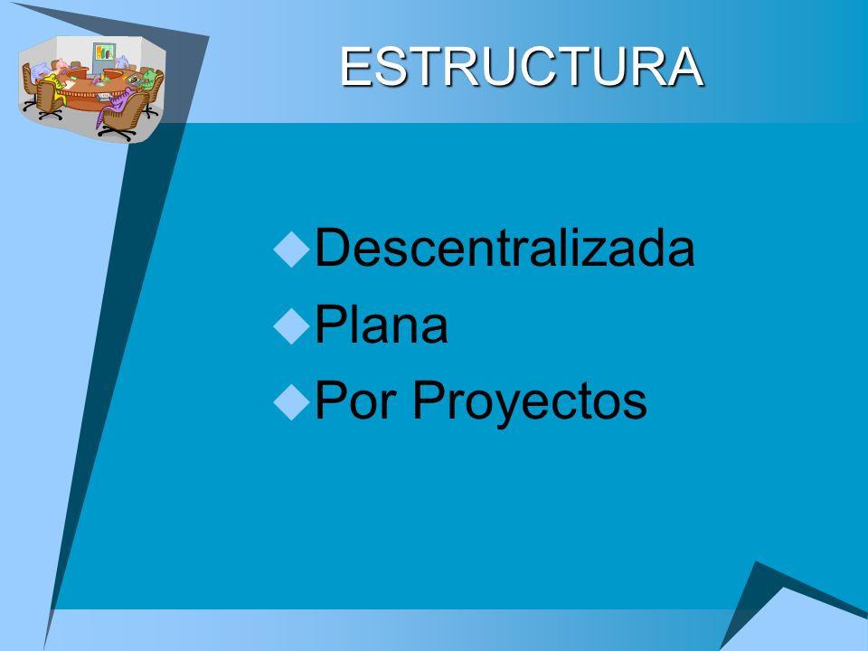 ESTRUCTURA Descentralizada Plana Por Proyectos
