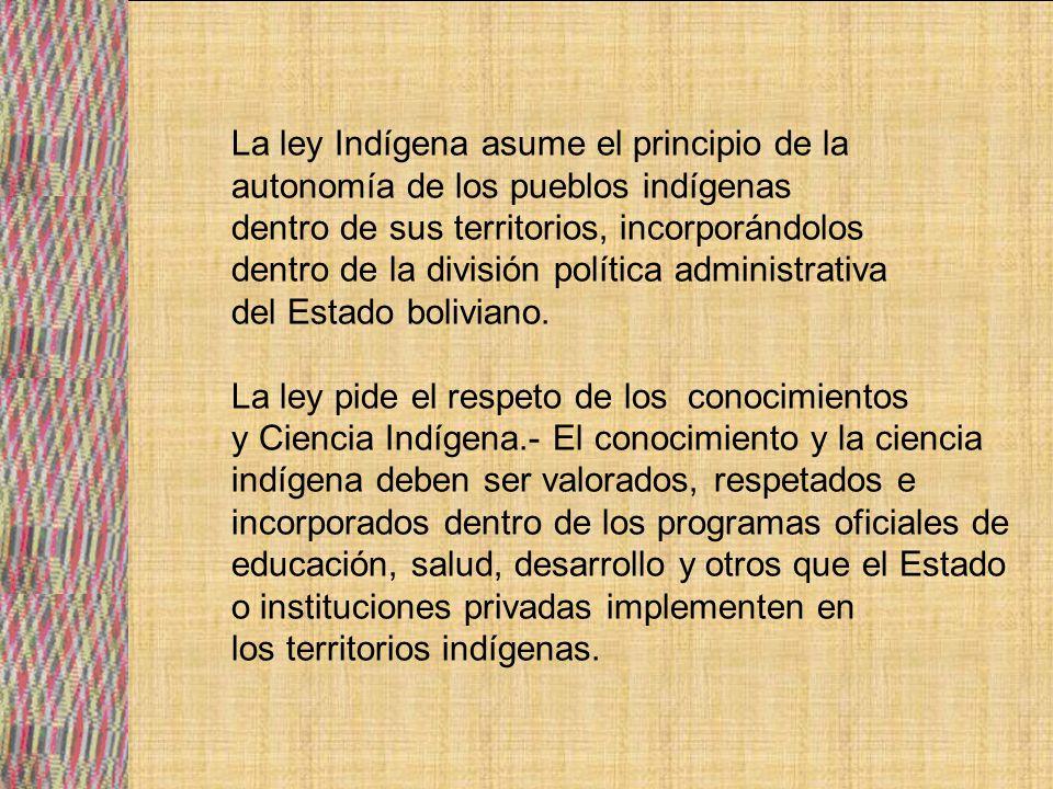 La ley Indígena asume el principio de la