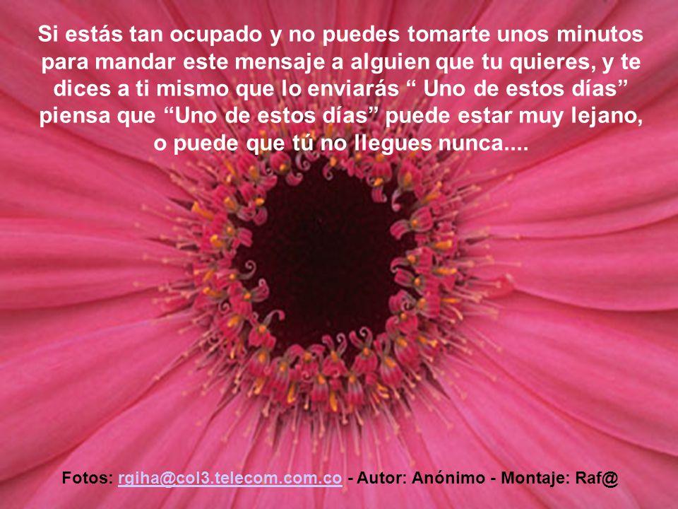 Fotos: rgiha@col3.telecom.com.co - Autor: Anónimo - Montaje: Raf@