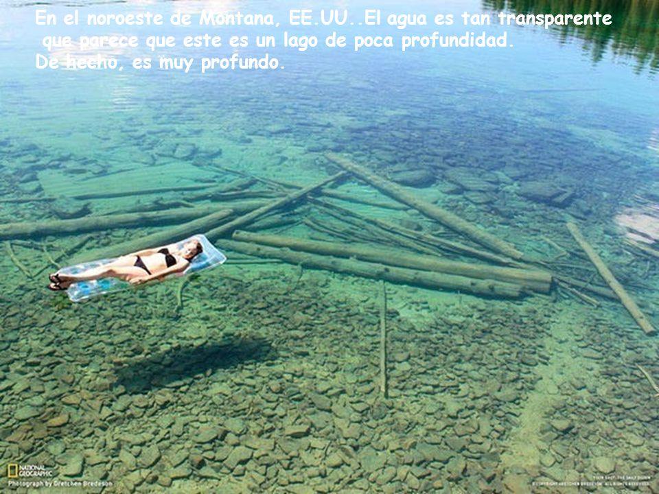 En el noroeste de Montana, EE.UU..El agua es tan transparente