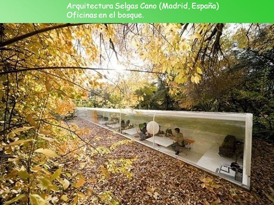 Arquitectura Selgas Cano (Madrid, España) Oficinas en el bosque.