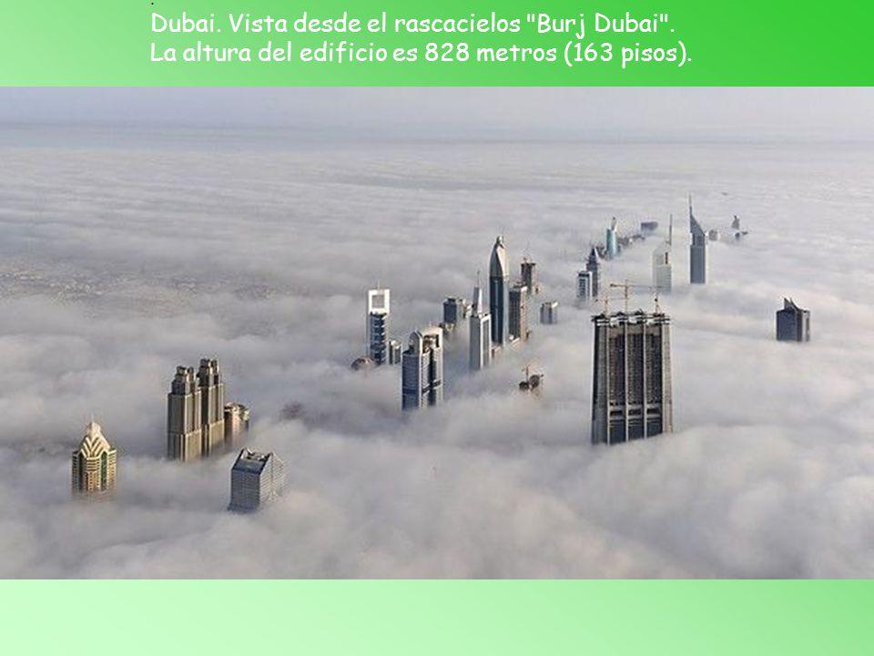 La altura del edificio es 828 metros (163 pisos).